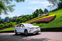 2019年哪款电动车卖的最好?