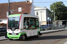 爱沙尼亚无人驾驶公共汽车上路, 民众免费试乘