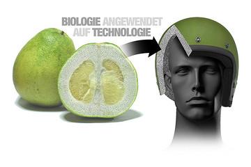从柚子皮和鱼鳞中获得灵感 宝马研发出创新材料用于安全防护