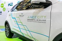 """国家大力推行新能源车,""""新能源汽车专用车牌""""将获更多特权"""