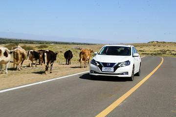 到新疆去试电车是什么体验?试驾东风日产轩逸·纯电