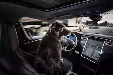 为全自动驾驶留一手 特斯拉推出Autopilot 2.5全新硬件