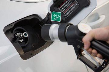 """氢璞氢途双""""氢""""合璧  助推中国燃料电池发展"""