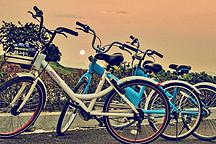 北京将立法规范共享单车押金、停放等管理难题
