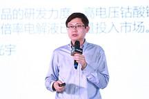 杉杉首席科学家赵兵:大容量高比能三元电池仍在开发,离放心使用还有一段距离