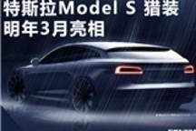 特斯拉纯电动旅行车曝光 将于明年3月首发亮相