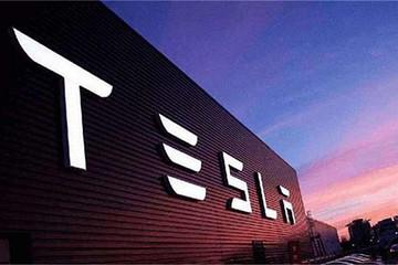 在上海建厂,于北京设立科技创新中心,特斯拉图什么?