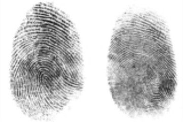Synaptics演示生物辨识技术 可利用指纹起动车辆