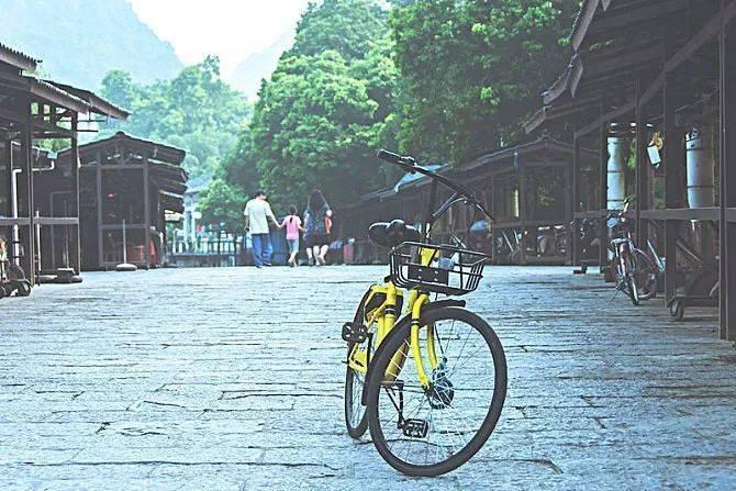 共享单车死得有多惨,就有多活该