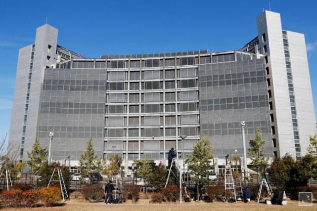 """需缴纳7000万日元 日产戈恩案""""同谋""""Kelly获准保释"""