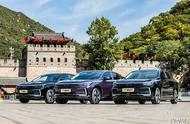 公务用车市场新突破   BEIJING-EU7入围国家政采目录