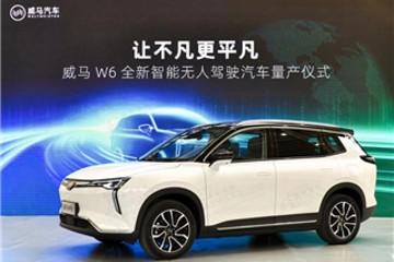 AVP、轿车、换电、固态电池,2021威马要大干一场