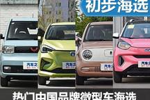 电动车受欢迎 热门中国品牌微型车海选