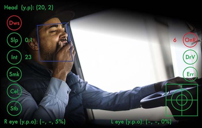 驾驶员监控系统,分心驾驶