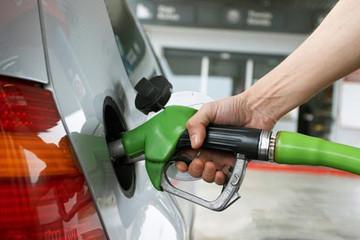 新能源汽车免购置税有望持续,三万公里/充电电价或有利好消息